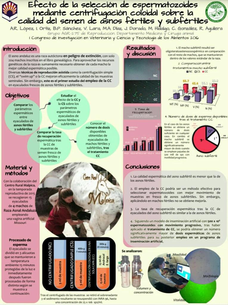 efecto de la selección de espermatozoides mediante la centrifugación coloidal